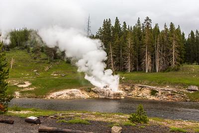 04-Yellowstone June 15--2