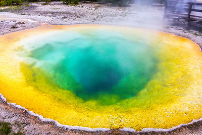 04-Yellowstone June 15--3