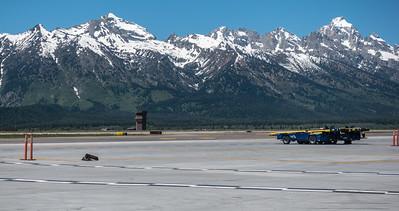01-Yellowstone June 12-00255