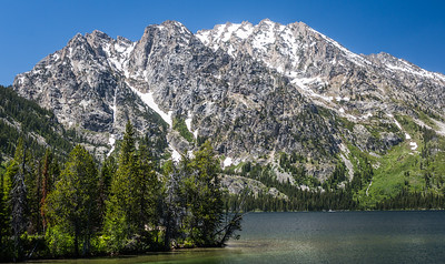 02-Yellowstone June 13-7132