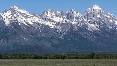 02-Yellowstone June 13-7104