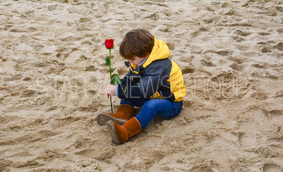 A little boy plants a rose in the sand at the memorail for Dennis Smalling Jr. in Point Pleasant Beach, NJ on 2/24/18. [DANIELLA HEMINGHAUS | THE OCEAN STAR]
