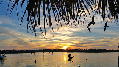 Anclote River sunset