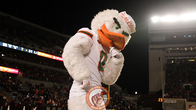 Sebastian the Ibis celebrates on the sidelines after a Miami touchdown. (Mark Umansky/TheKeyPlay.com)