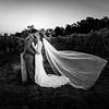 Lehman-Wedding-1133