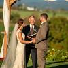 Lehman-Wedding-0492