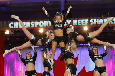 Cheer Sport Grey Reef Sharks Intl Open AG 6