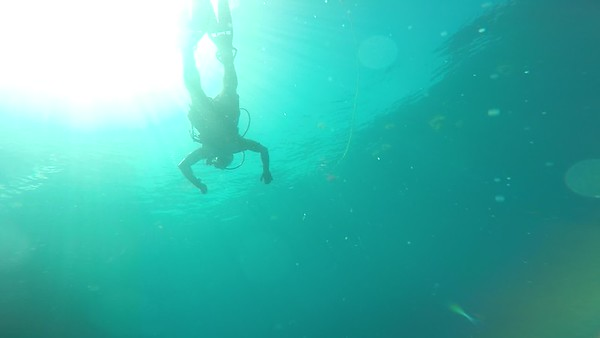 Key West Diving