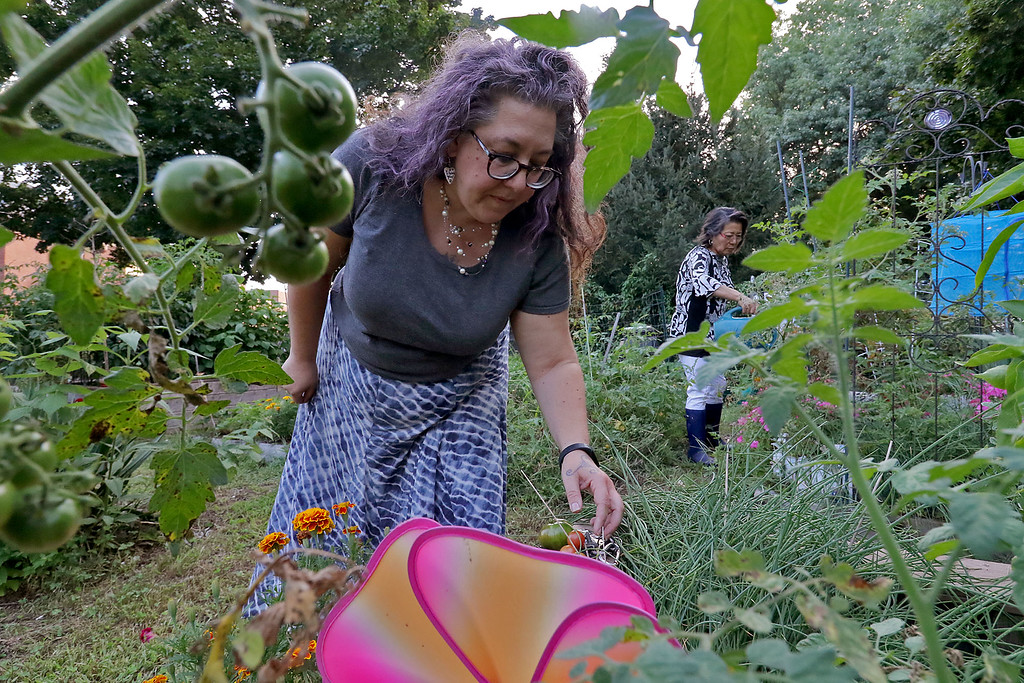 . Fitchburg Volunteer Aerevyn Harteis. She works at the Sundial Community Garden and on Friday night she was out checking things out. SENTINEL & ENTERPRISE/JOHN LOVE