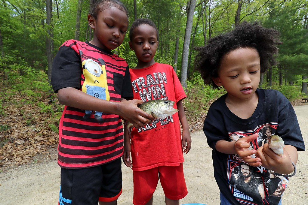 . Shaquille Jone, 6, tristan Jones, 6, and Jhorei Jones, 3, show off the fish that Jonathen Jones and Seivily Jones where catching as they fished in Colburns Reservoir at Barrett Park in Leominster on Tuesday, May 15, 2018.  SENTINEL & ENTERPRISE/JOHN LOVE