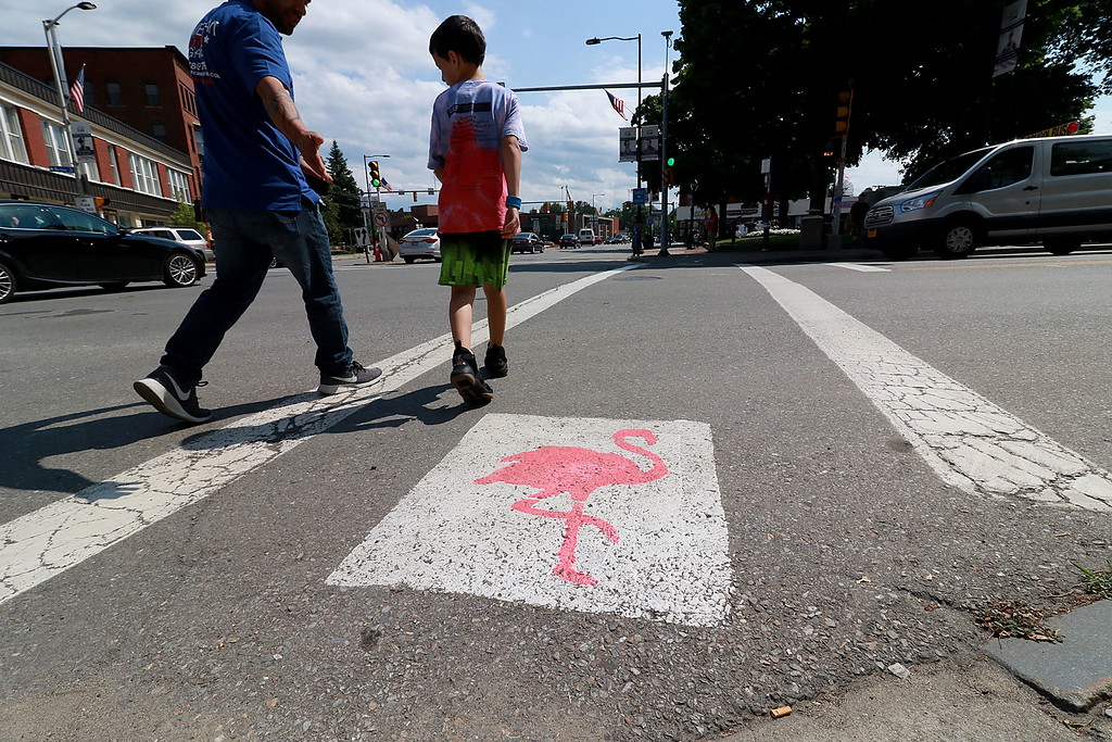 . The City of Leominster has painted Flamingos on their crosswalks in the downtown area around Monument Square.This flamingo is in the crosswalk at the corner of West Street and Main Street. SENTINEL & ENTERPRISE/JOHN LOVE