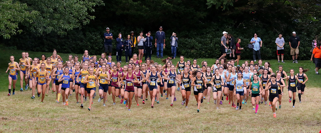 . The start of the cross country meet hosted by Fitchburg State University at Doyle Conservation Area in Leominster on Starurday.SENTINEL & ENTERPRISE/JOHN LOVE