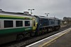 As has been the norm during previous LRA seasons, Belmond Grand Hibernian liveried loco 216 is pressed into normal passenger service on the Dublin - Cork route to help the 201 fleet which suffers from bad wheelslip during this time of year. Here we see the loco arriving into Portlaoise with the 1300 Heuston - Cork. Thurs 08.11.18