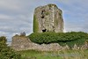 Beagh Castle in Co. Limerick on the shores of the Shannon Estuary. Sun 02.09.18