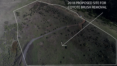 2018 road and brush removal proposal