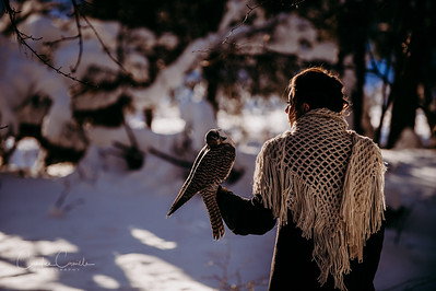 Falcon-portrait-BC-photographer-0239Candice Camille Photography