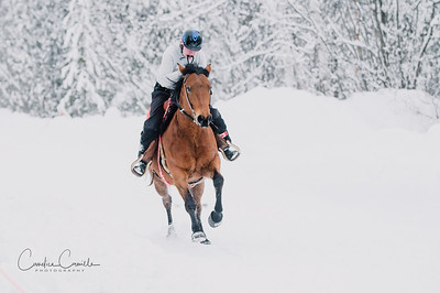 skijoring-equine-photographer-4504Candice Camille Photography