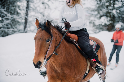 skijoring-equine-photographer-4498Candice Camille Photography