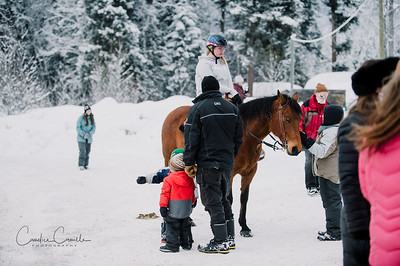 skijoring-equine-photographer-4482Candice Camille Photography