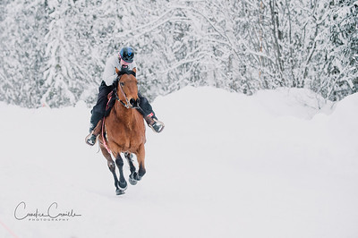 skijoring-equine-photographer-4503Candice Camille Photography