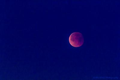 01-31-2018 Lunar Eclipse