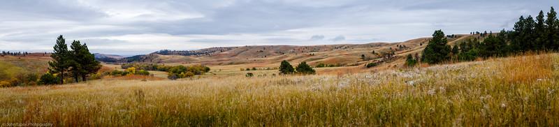 Wide Open Plains