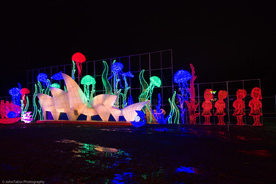 Scene at the LightUp Fest 2018
