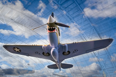 P-40 Day Dream