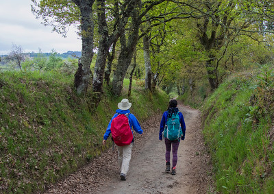 180509 Camino Palas de Rei to Melide