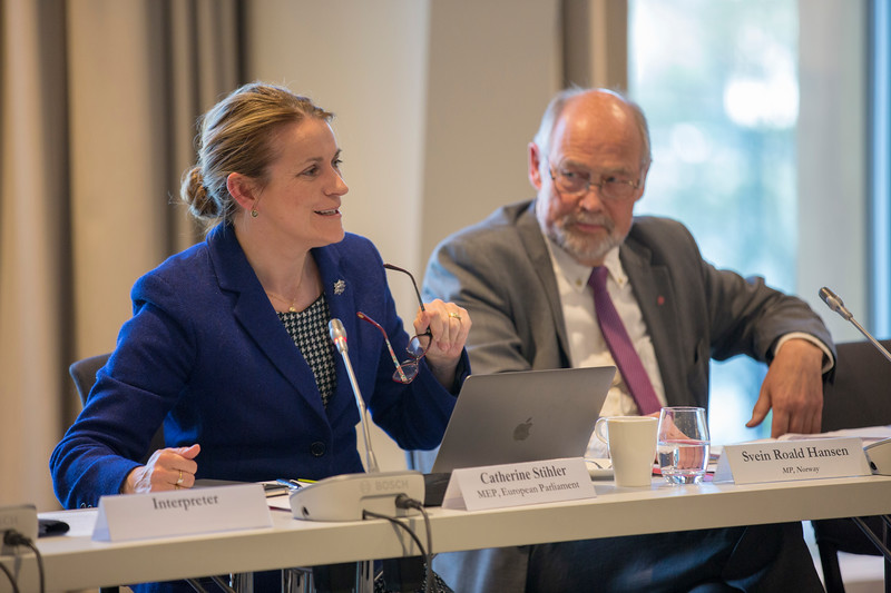 From left: Ms Catherin Stihler, Member of the European Parliament, briefs the EEA Joint Parliamentary Committee on Brexit and the EEA; Mr Svein Roald Hansen, Member of the Norwegian Parliament.