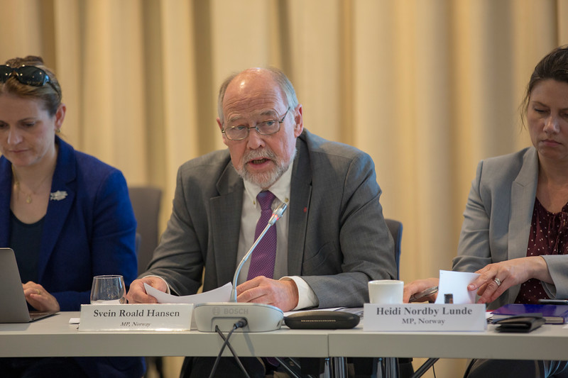 Centered: Mr Svein Roald Hansen, Member of the Norwegian Parliament, briefs the EEA Joint Parliamentary Committee on the EU Mobility Package.