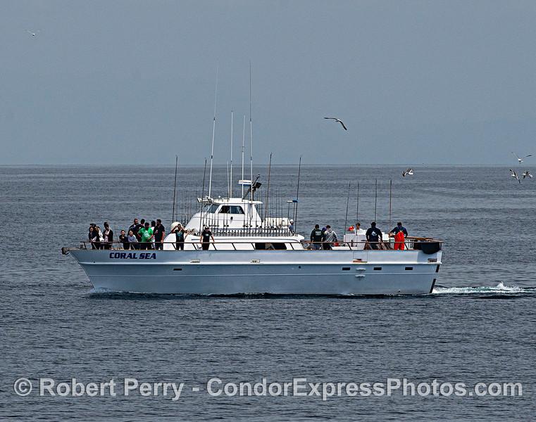 "Sport fishing vessel ""Coral Sea."""