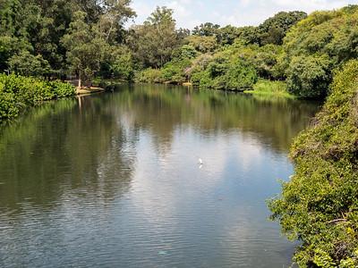 Lago das Garças