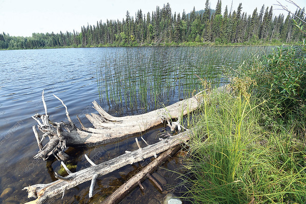 View of Summit Lake from Scouts Canada Echo Camp.