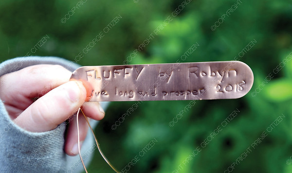 A tag made by Robyn Bennett placed on a tree she planted with Scouts.  July 25 2018