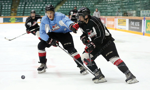Keegan Craik of Team Chara (black) and Jack Sander of Team Connolly (blue) both chase the loose puck on Sunday afternoon at CN Centre as part of Prince George COugars training camp. Citizen Photo by James Doyle       August 26, 2018
