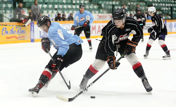 Tyler Maser of Team Chara (black) and Chance Adrian of Team Connolly (blue) both go after the loose puck on Sunday afternoon at CN Centre as part of Prince George Cougars training camp. Citizen Photo by James Doyle       August 26, 2018