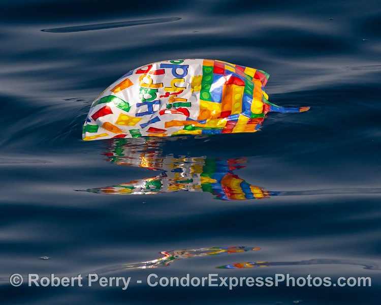 Mylar balloon death trap floating on the ocean surface.
