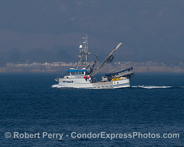Squid seiner heading out.