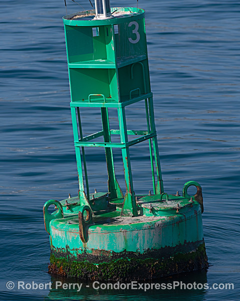 Harbor entrance buoy - nobody home.