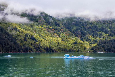 DA054,DT,Tracy Arm Fjord, Alaska