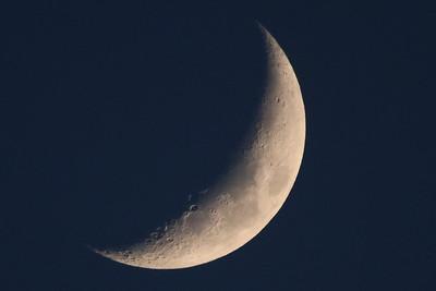 Waxing Cresent Moon