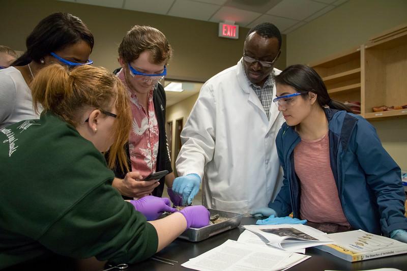 Natural Sciences - Biology