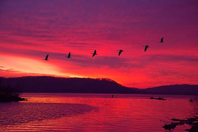 DA054,DP,Sunrise at Mud Lake