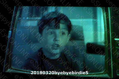 20180320byebyebirdie5