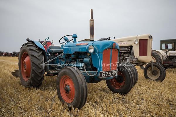 675 HPT Fordson Dexta
