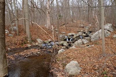 Hurd State Park Stream