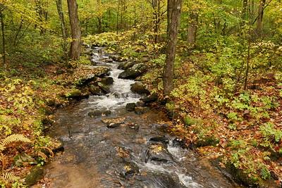 Meshomasic State Forest Stream