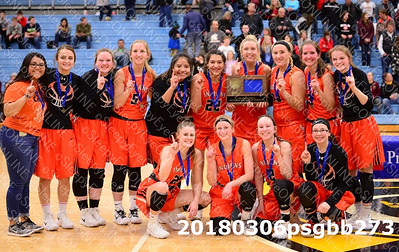 20180306 Sleepy Eye Girls Basketball Sub-Section Championship