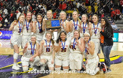 20180309 Sleepy Eye Girls Basketball Section Championship